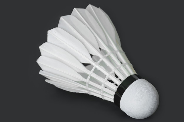 Miniguide til at udvælge de perfekte badmintonbolde